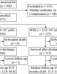 Participant flow chart aad acute aortic dissection iqr interquartile ranges wbcc white blood cell count table baseline characteristics according also rh researchgate