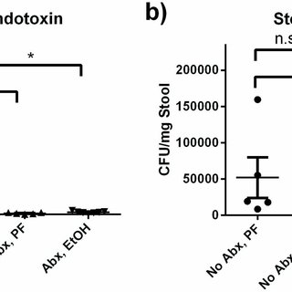 Antibiotic treatment reduces expression of inflammatory