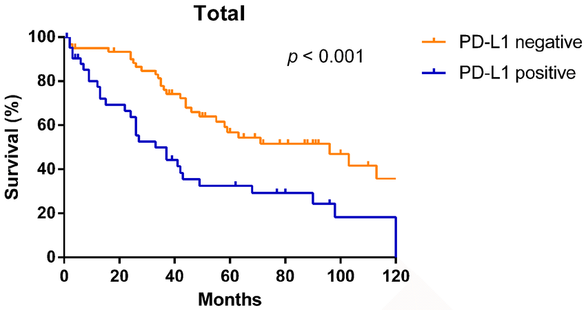 Kaplan–Meier overall survival curves according to PD-L1