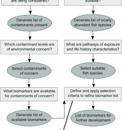 conceptual diagram outlining a three step protocol for identifying suitable biomarkers to assess fish health [ 850 x 1258 Pixel ]