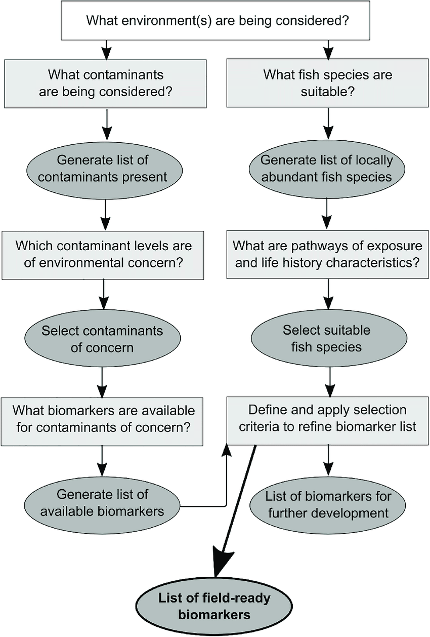hight resolution of conceptual diagram outlining a three step protocol for identifying suitable biomarkers to assess fish health