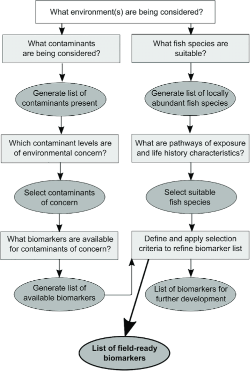 small resolution of conceptual diagram outlining a three step protocol for identifying suitable biomarkers to assess fish health
