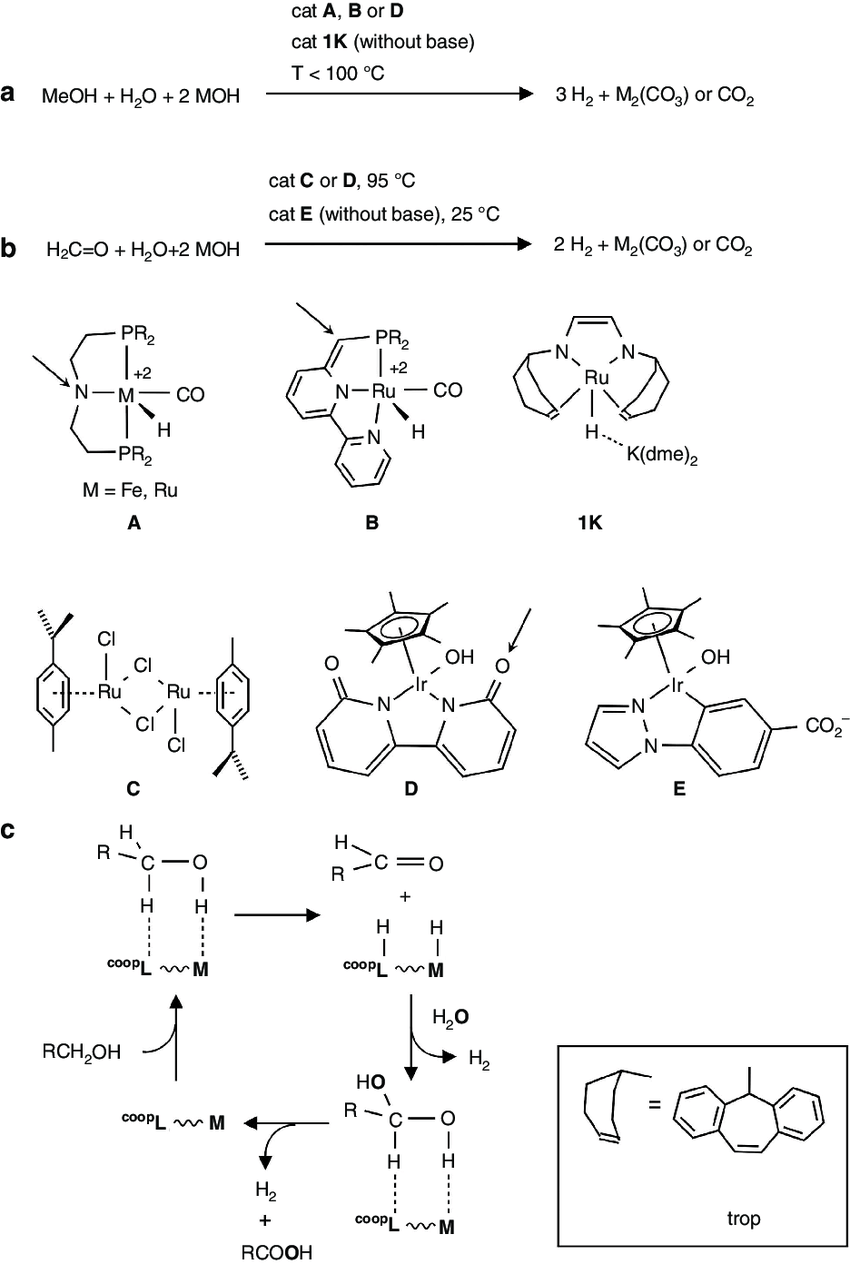 hight resolution of homogeneously catalysed reforming reaction of meoh and formaldehyde catalysed dehydrogenation of a
