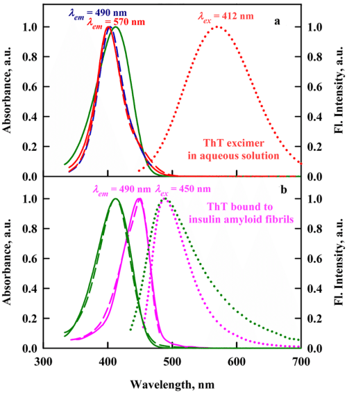 small resolution of the absorption fluorescence excitation and fluorescence spectra of tht in aqueous solution and incorporated into