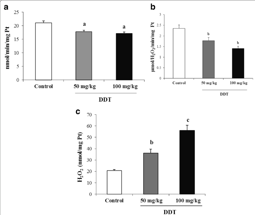 Effect of DDT on antioxidant enzyme activities in testis