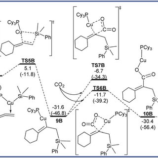 Free energy diagrams to lead to P 0–2 catalyzed by Cu/L B