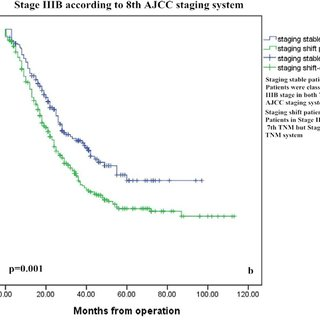 AJCC stage and TNM subgroup distributions of the patients