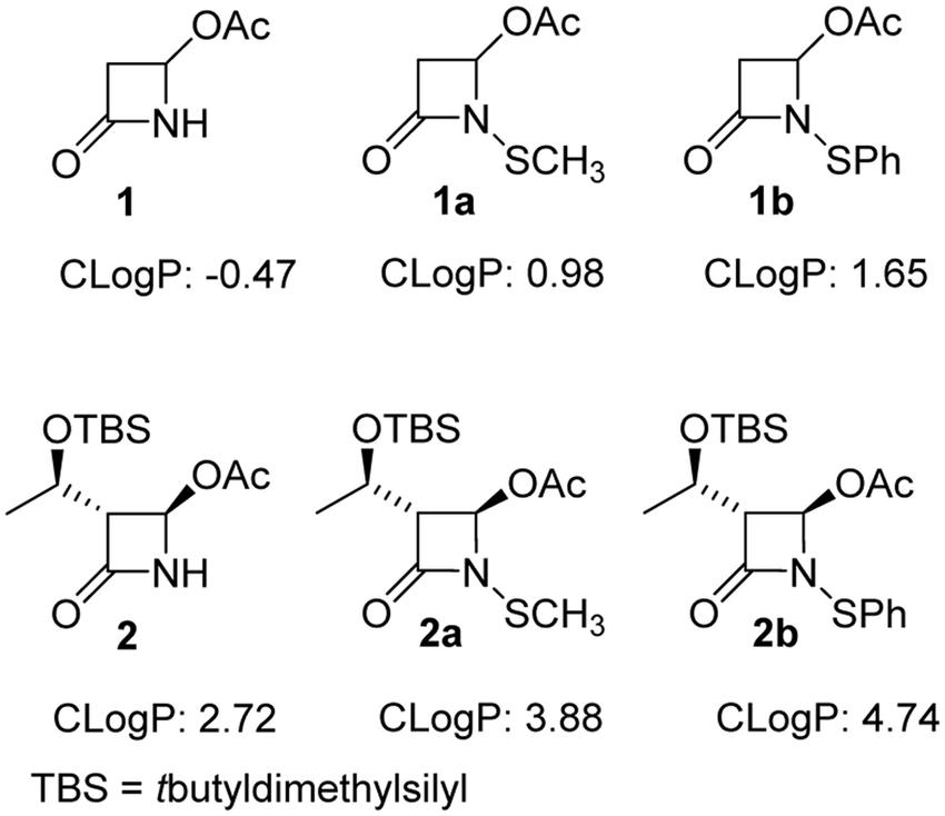 β-lactams evaluated in this study. Calculated logP (CLogP