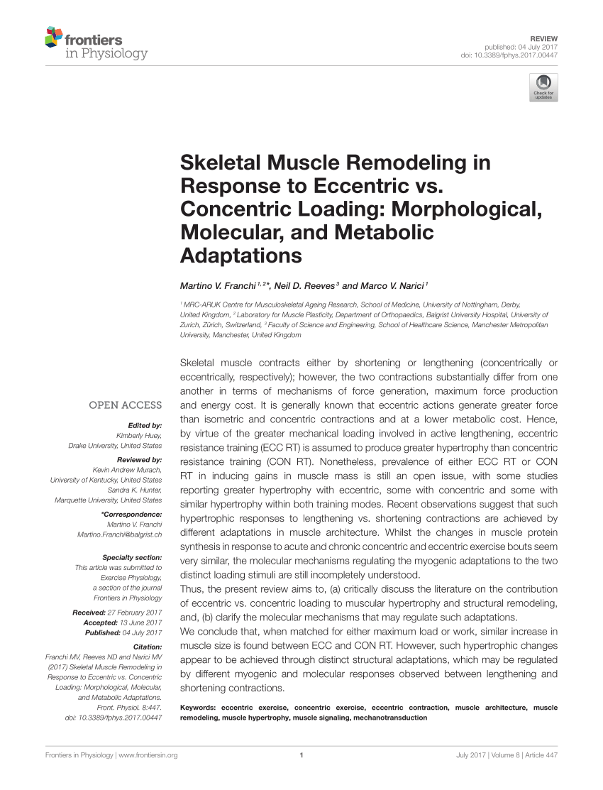 PDF Mysteries Of Muscle Contraction