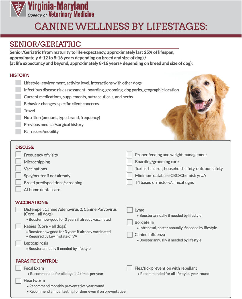 medium resolution of example of modified checklist for senior dogs for virginia maryland college of veterinary medicine