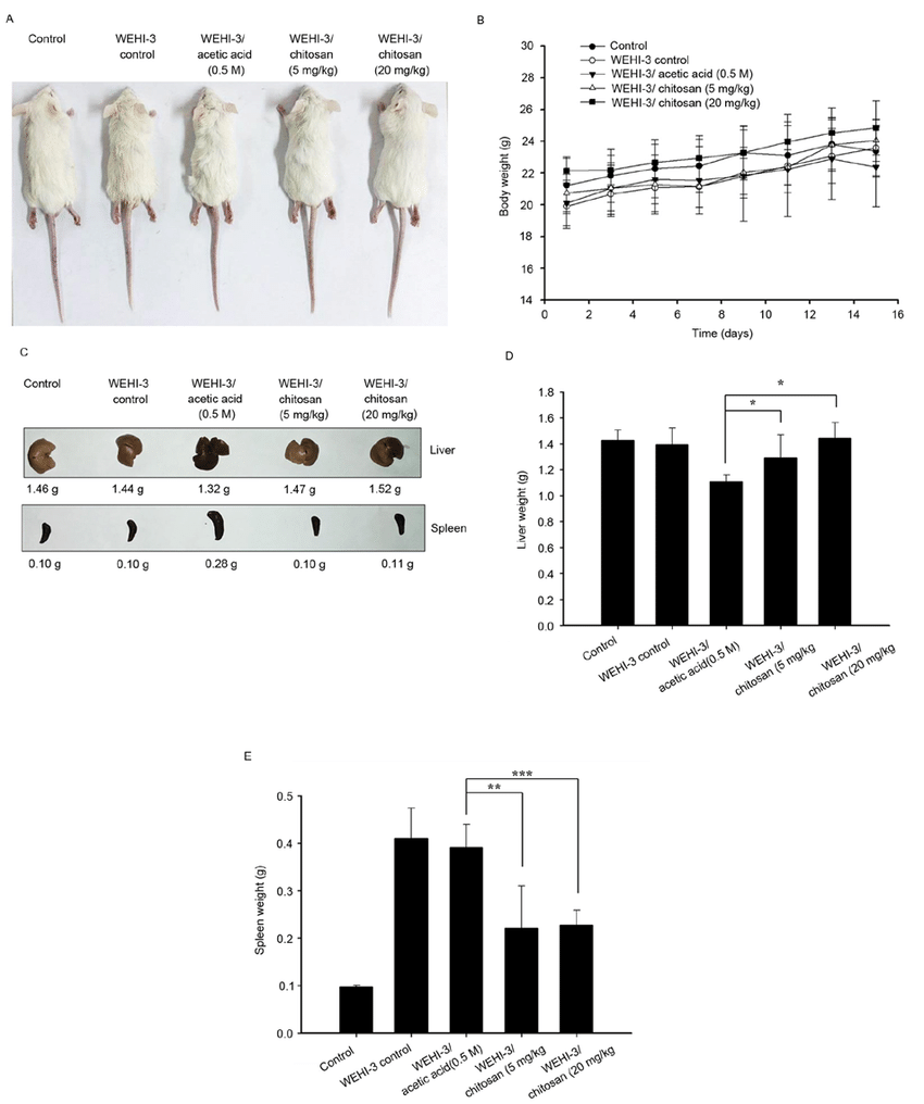 hight resolution of effects of chitosan on the appearance and body liver and spleen weights of wehi