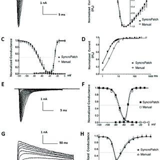 (PDF) High-throughput electrophysiological assays for