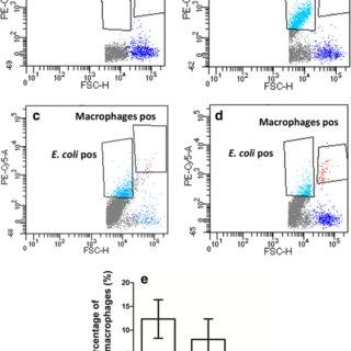 Flow cytometry analysis of phagocytosis of 5-h biofilm