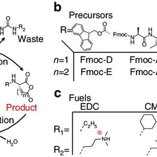(PDF) Non-equilibrium dissipative supramolecular materials