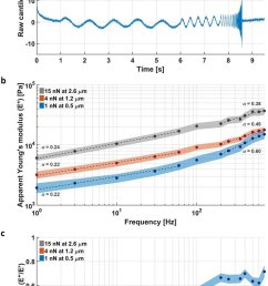measuring the response of the nucleus at different deformation length and time scales  [ 850 x 1496 Pixel ]
