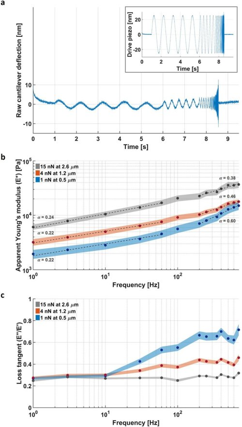 small resolution of measuring the response of the nucleus at different deformation length and time scales