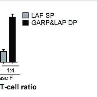 | PNGase F treatment does not affect Treg ability to
