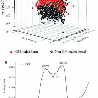 (PDF) Discrimination of Transgenic Maize Kernel Using NIR