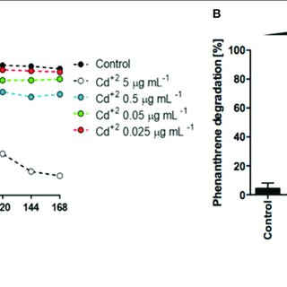 | Genetics of Phenanthrene degradation in S. xenophagum
