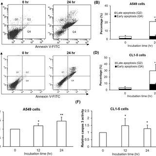 (PDF) Toxicological effects of NCKU-21, a phenanthrene