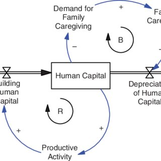 Conceptual framework guided by ecological systems theory