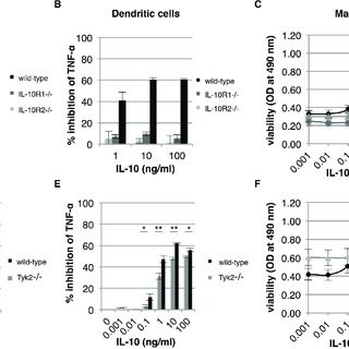 The differential response of bone marrow-derived cells to