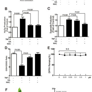 DA inhibited TNF-α-induced ICAM-1 expression and monocyte