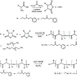 Scheme 3. Synthesis of Photoresponsive o-nitrobenzyl-L-Cys
