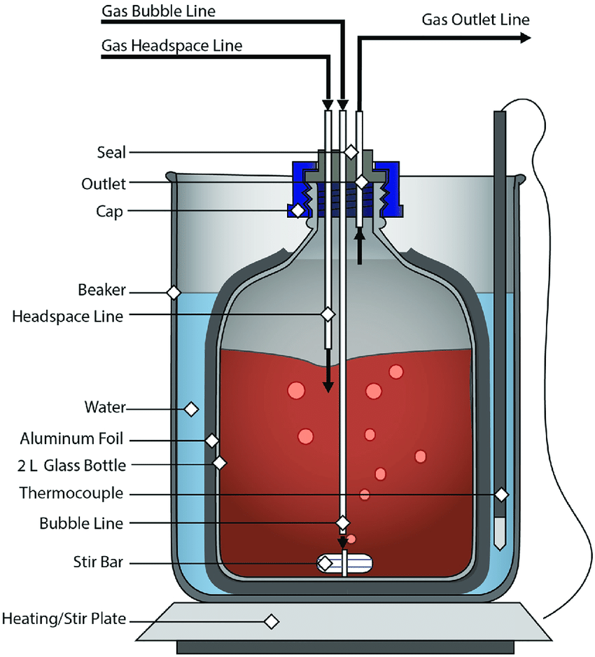 hight resolution of schematic of the polyhhb reactor vessel this figure shows the glass bottle bench scale polymerization