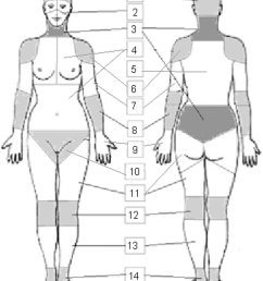 illustration of the 51 regions and 14 body parts on the female body chart 1 [ 850 x 1034 Pixel ]