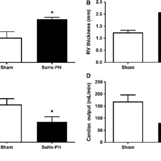 SuHx-PH induces RV hypertrophy and decreases RV stroke