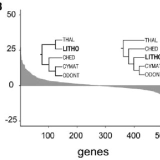(PDF) Signal, Uncertainty, and Conflict in Phylogenomic