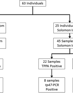 Study flowchart samples were originally collected in studies conducted ghana and the solomon islands results of treponema pallidum particle also rh researchgate
