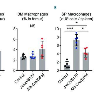 (PDF) Expansion of EPOR-negative macrophages besides