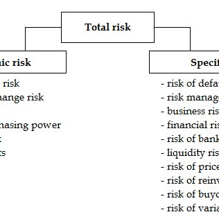 (PDF) ISSUE OF RISK IN LITERATURE
