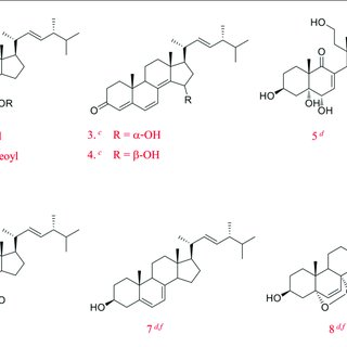 Some of the biologically active ergosterol derivatives