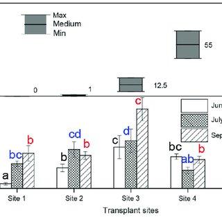 (PDF) Maintenance of salt barrens inhibited landward