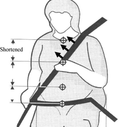 illustration of shoulder belt making contact with the neck of a late term pregnant women  [ 850 x 971 Pixel ]
