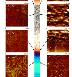 atomic force microscopy afm maps height and modulus obtained in different zones [ 850 x 1549 Pixel ]