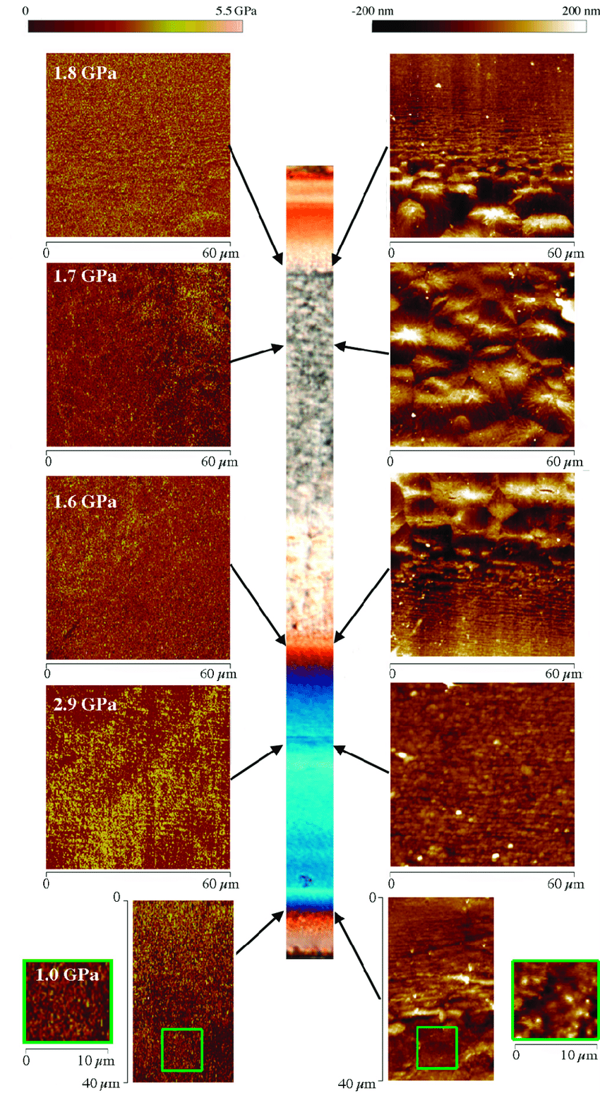 hight resolution of atomic force microscopy afm maps height and modulus obtained in different zones