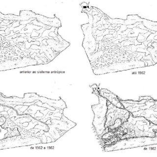 (PDF) O sequestro de carbono em trechos da floresta urbana