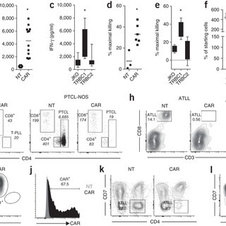 Targeting the T cell receptor β-chain constant region for