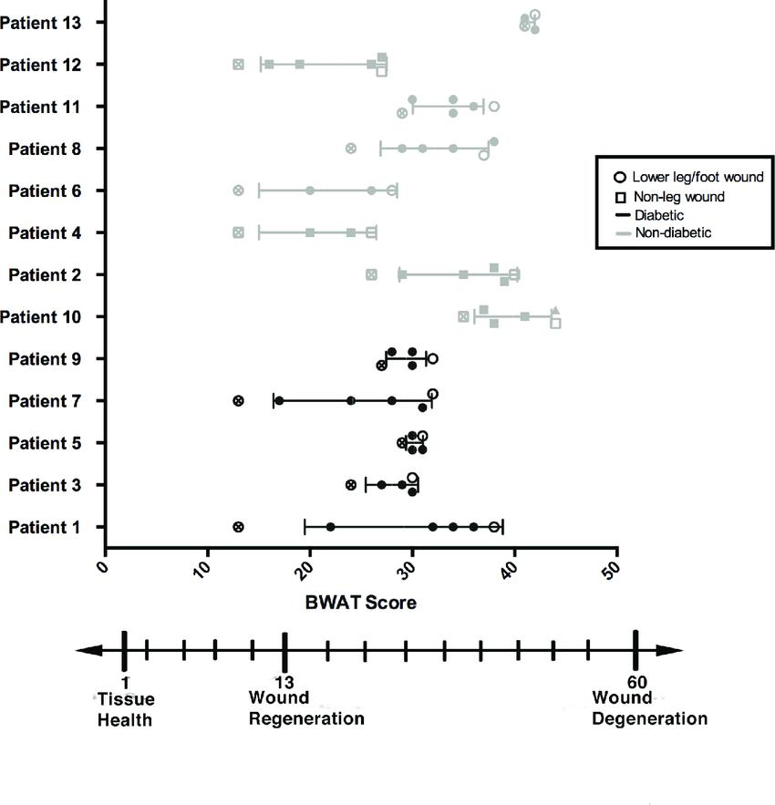 wound assessment diagram 2006 suzuki eiger wiring bates jensen bwat scores of each patient download scientific
