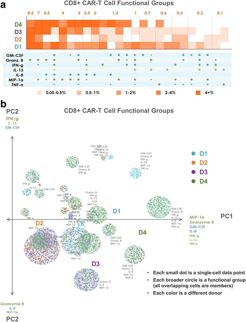 hight resolution of polyfunctional heat map and pat pca reveal distinct cd8 car t cell profiles across donors