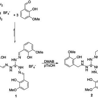 Process flow diagram of the Murban gas sweetening plant