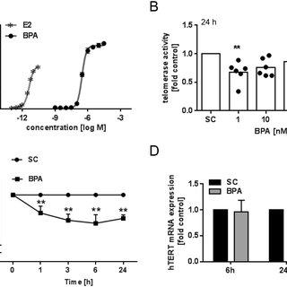 (PDF) Low-dose levels of bisphenol A inhibit telomerase