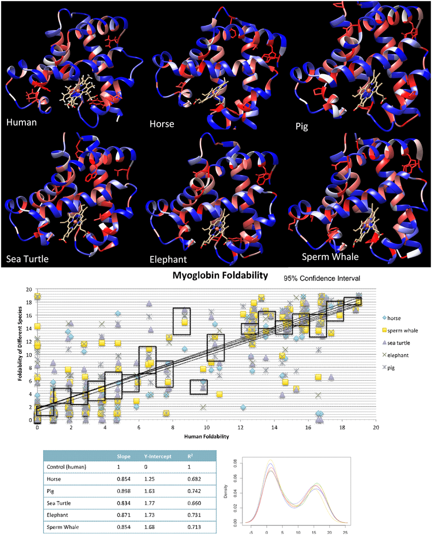 hight resolution of critical residue and foldability comparison across myoglobin for 6 species a the output colored