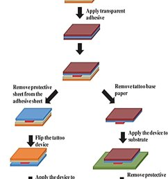 fabrication of printable tattoo based electrochemical devices reproduced from ref 60  [ 850 x 1456 Pixel ]