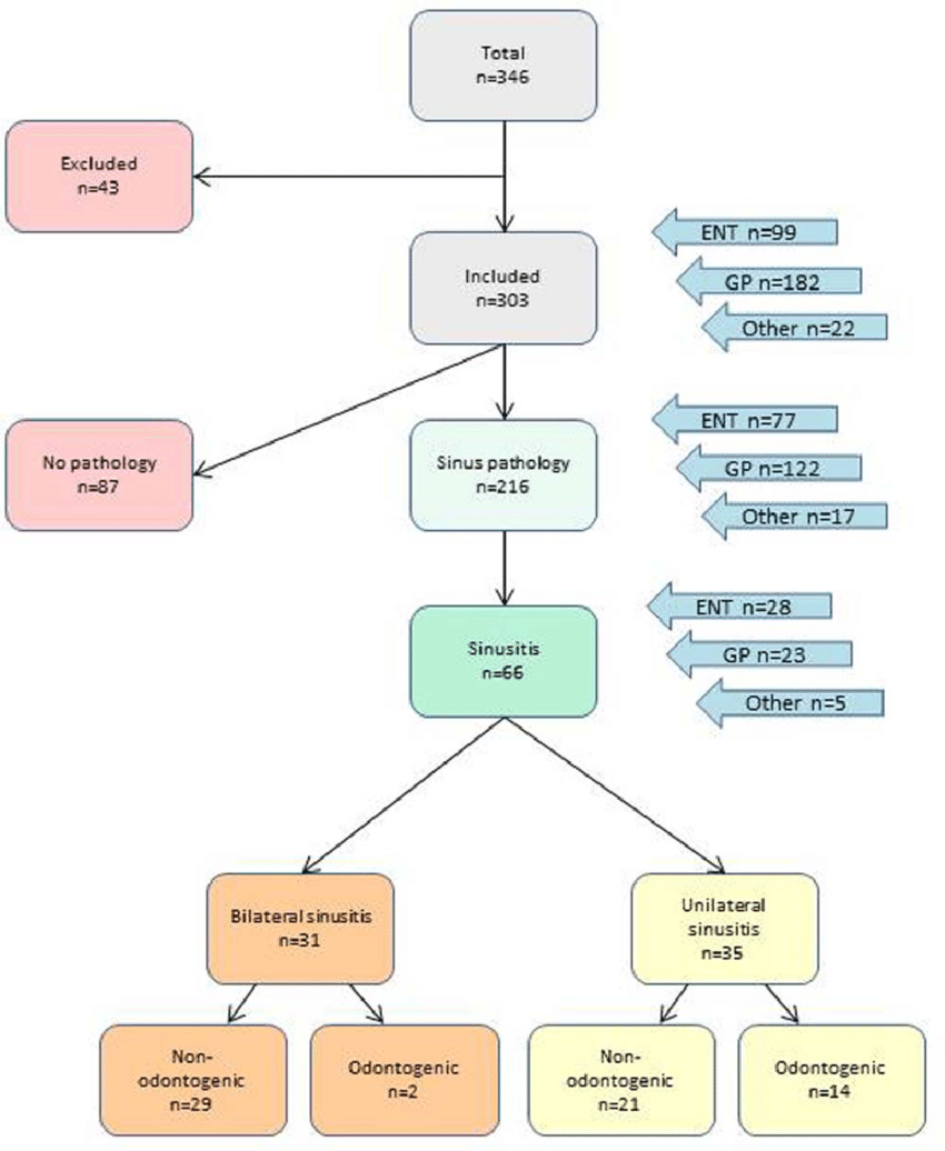 medium resolution of flow chart showing the distribution of sinus pathology among patients that was examined with cone beam