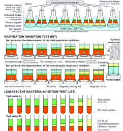 construction of the bacterial inhibition tests used in this work atu download scientific diagram [ 850 x 975 Pixel ]